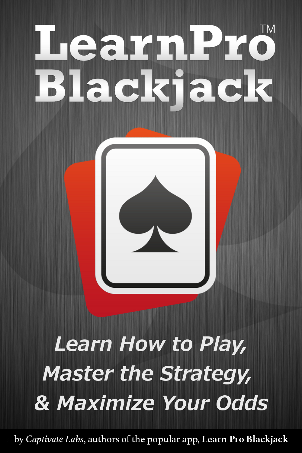Book Cover for the Learn Pro Blackjack Book